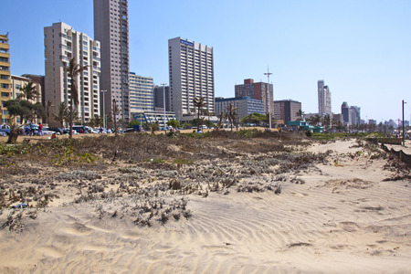 rehabilitated people: DURBAN, SOUTH AFRICA - SEPTEMBER 21, 2014: Many unknown people walk behind rehabilitated sand dune against city skyline in Durban, South Africa