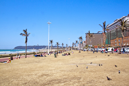 grass verge: DURBAN, SUDAFRICA - 21 Settembre 2014: Molte persone sconosciute e piccioni rilassarsi sull'erba punto sul lungomare a Durban, Sud Africa Editoriali