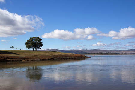 howick: lonely tree reflected in the water of midmar dam