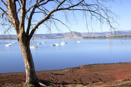 howick: Leafless Branches Overhanging Yachts anchored on Midmar Dam in the Midlands of Kwa-Zulu Natal, South Africa Stock Photo