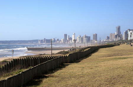 rehabilitated: Early morning view of rehabilitated sand dunes against city skyline in durban South Africa
