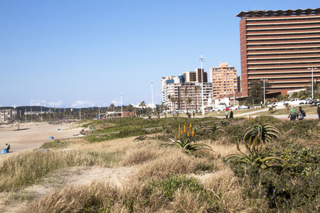 rehabilitated: DURBAN, SOUTH AFRICA - JUNE 7, 2015: Many unknown people walk along promenade next to rehabilitated dune on beach front in Durban, South Africa