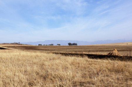 fenced in: Fenced field of dry grass in south african rural winter landscape