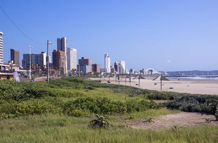 rehabilitated: Rehabilitated dunes on beach against city skyline in Durban South Africa Stock Photo
