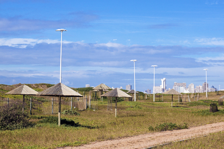 leading light: Dirt road leading through natural picnic area with sunshade and light poles against distant Durban City Skyline