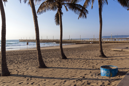 blue bin: Blue garbage bin and palm trees against empty beach sea and concrete pier in Durban South Africa Stock Photo