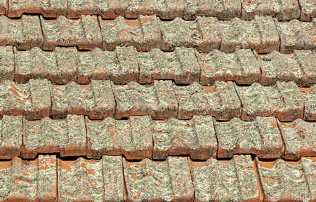 neglected: Close up of neglected  terracotta roof tiles covered in lichen Stock Photo