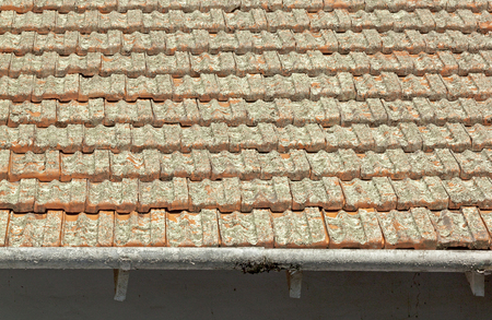 neglected: Close up of neglected  terracotta roof tiles and peeling gutters covered in lichen Stock Photo