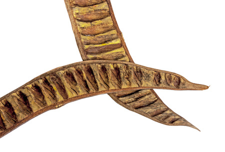 Close up above view studio shot of two separated crossed over halves of empty seed pods brown and yellow patterns and textures of a flamboyant tree Stock Photo