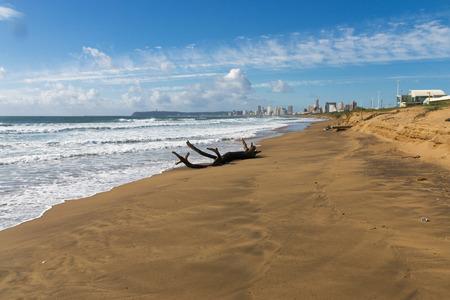 Driftwood log on empty beach and  blue cloudy sky against distant Durban city skyline