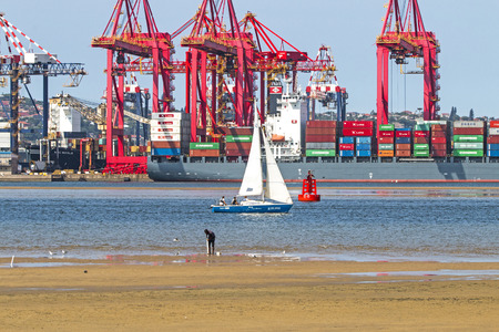 DURBAN, SOUTH AFRICA - APRIL 9, 2017: Unknown man harvesting mud prawns and yacht against container vessel and loading cranes at low tide in Durban harbor in South Africa