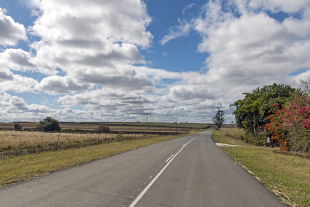 Rural empty asphalt road running through sugar cane fields against blue cloudy sky in KwaZulu-Natal in South Africa Stock Photo