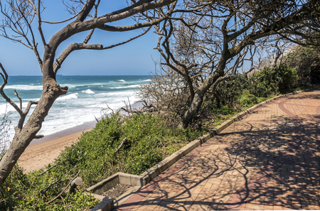 Section of paved vegetation lined and covered  beach walkway against ocean and blue sky at Umhlanga in Durban, South Africa Stock Photo