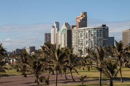 Grassy area and palm trees outside hotels on durbans golden mile