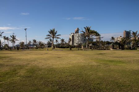 Green grass and palm trees before in from hotels on durbans golden mils
