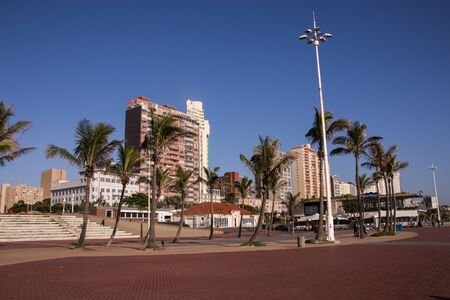 Palm trees and hotels against blue skyline in Durban, South Africa
