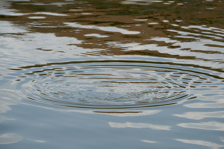 submerging: Whirlpool on a lake caused by a fish submerging into the water. Stock Photo
