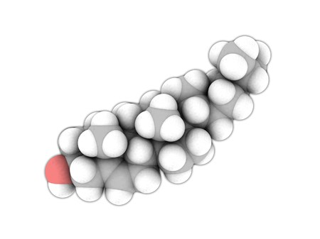 Molecular structure of Cholesterol on white in space-fill view photo