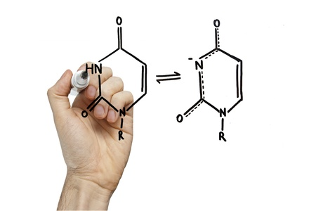 nucleic: hand drawing molecule structure of nucleic acid bases on a virtual whiteboard