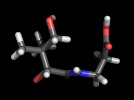 Stick representation of a vitamin b5 molecule, also called pantothenic acid Stock Photo - 13903792