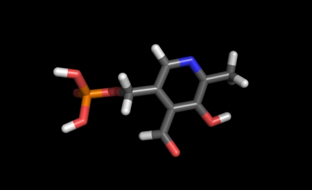 Stick representation of a vitamin b6 molecule, also called PLP Stock Photo - 13903769