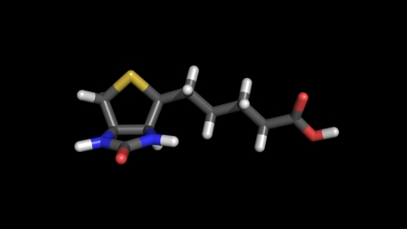 3d stick representation of vitamin b7, also called vitamin h, coenzyme r and biotin Stock Photo - 13903767