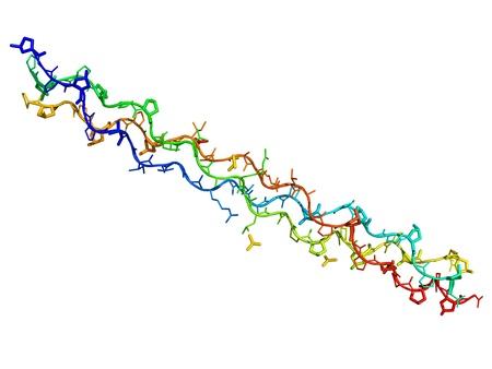 segmentar: Segmento de col�geno humano aislado en un fondo blanco