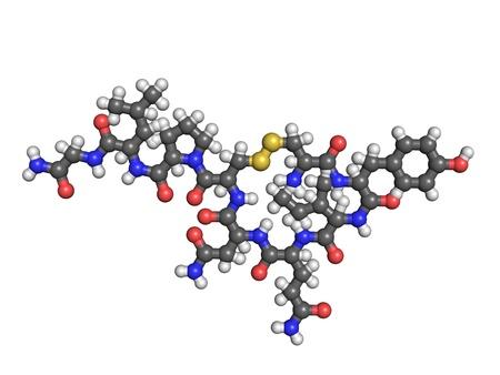 oxytocin: Oxytocin molecule