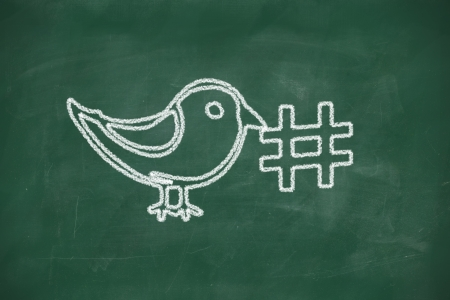 business trending: Drawing of a bird holding a hashtag for social media tag
