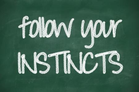 instincts: follow your instincts phrase handwritten on blackboard