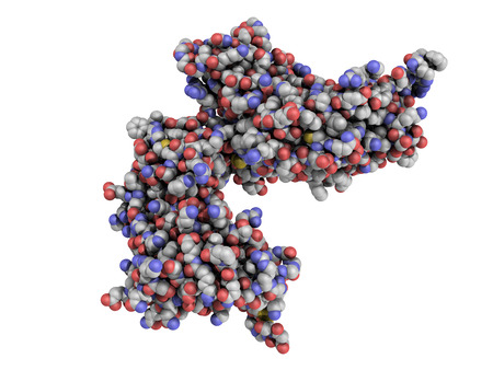 biomarker: cyclic ADP ribose hydrolase  CD38  protein  CD38 is an enzyme present on the cell surface of many immune cells and it is a prognostic biomarker used in leukemia diagnosis