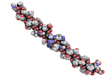 Chemical structure of a collagen model protein  Collagen has a triple helix structure and is a major component of many tissues, including skin and bone photo