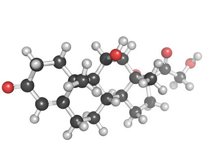 Ball and stick model of cortisol, a stress hormone released by the adrenal gland  It is important for fat, protein and carbohydrate metabolism Stock Photo - 22944348