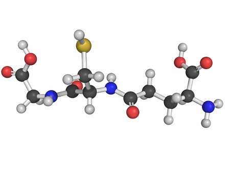 reactive: Chemical structure of glutathione, an antioxidant, preventing damage to important cellular components caused by reactive oxygen species such as free radicals and peroxides