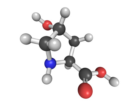 amino: Chemical structure of hydroxyproline (Hyp), collagen building block