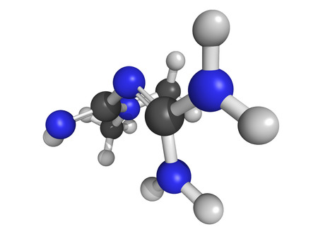 metformin: Chemical structure of metformin, an oral antidiabetic drug in the biguanide class