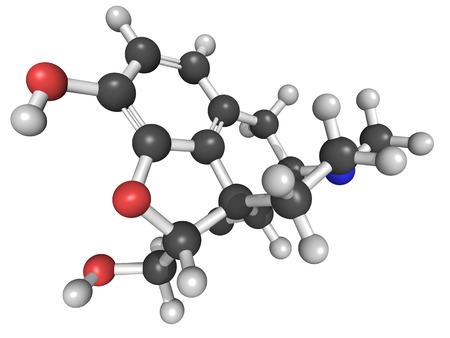 Morphine molecular model  Morphine is a potent opiate analgesic