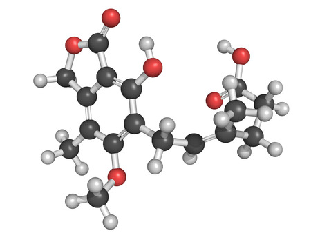 monophosphate: Structure of mycophenolate  mycophenolic acid  immunosuppressive drug  Used to prevent transplant rejection and in treatment of autoimmune disease