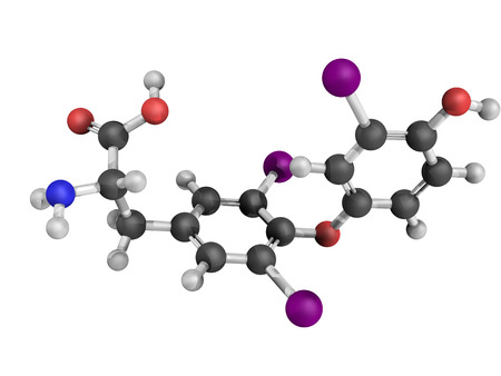body temperature: Chemical structure of a triiodothyronine (T3) molecule, thyroid hormone that affects growth and development, metabolism, body temperature, and heart rate.