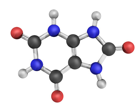 purine: Chemical structure of uric acid. High blood levels of uric acid cause the disease gout.