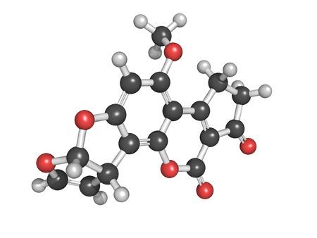 produits c�r�aliers: aflatoxine B1 est une m�tabolites canc�rog�nes des esp�ces de champignons qui colonisent grain, contaminant ainsi la viande et les produits laitiers d'animaux qui ont �t� nourris de grain contamin�. Ball et le mod�le de b�ton.