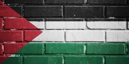 Palestine flag on texture brick wall photo
