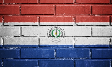 bandera de paraguay: Bandera de Paraguay en la pared de ladrillo textura Foto de archivo
