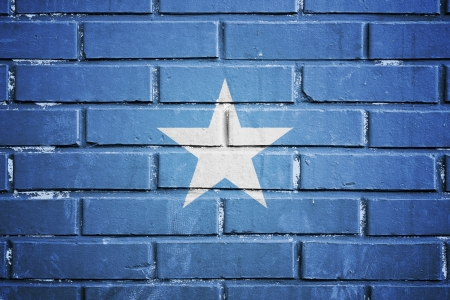 Somalia flag on the brick wall