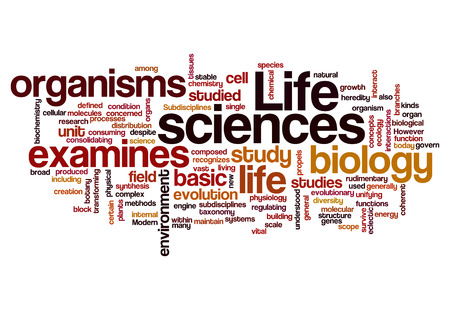 sciences: life sciences biology concept background on white Stock Photo