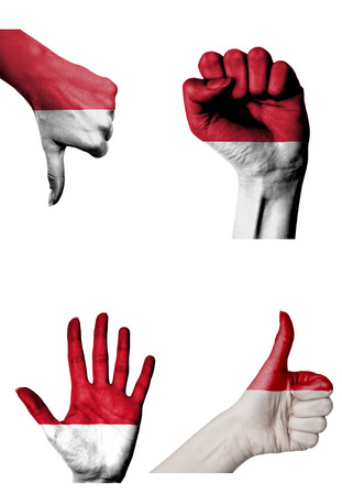 closed fist: hands with multiple gestures (open palm, closed fist, thumbs up and down) with Monaco flag painted isolated on white