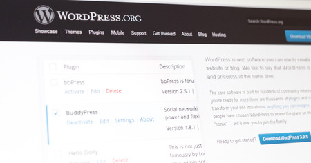 wordpress: Tours, France - June 17, 2014: Wordpress website on a computer screen. WordPress is a free and open source blogging too and content management system (cms). Editorial