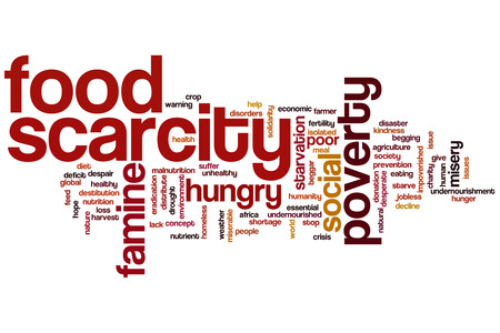Food scarcity concept word cloud background photo