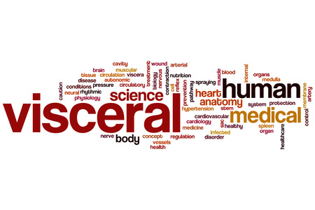 Visceral concept word cloud background photo
