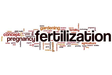 sex cell: Fertilization word cloud concept